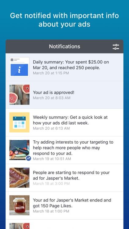 Facebook Ads Manager screenshot-4