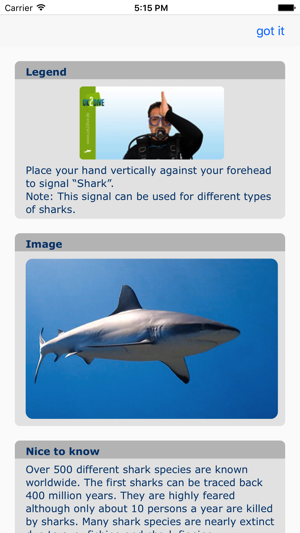 Dive Signals