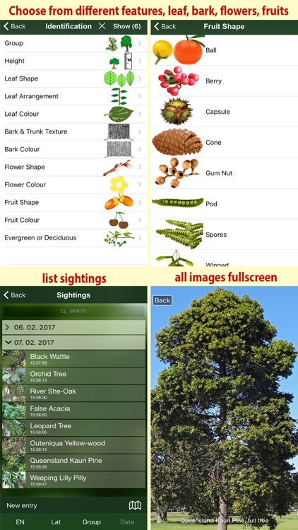 Tree Id Australia - Sydney's Urban Trees & Shrubs screenshot-3
