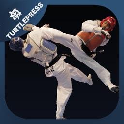 Taekwondo Sparring Skills