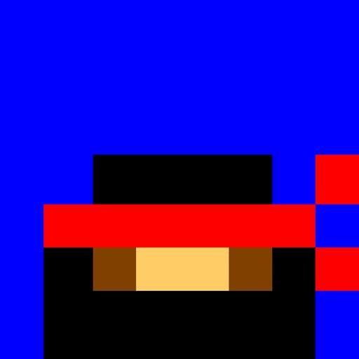 The Pixel Ninja