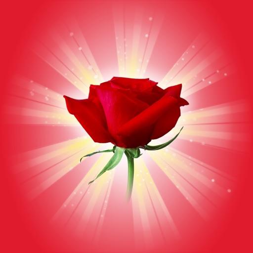 Romantic Rose Stickers