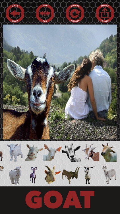 Goat stickers - photo editor goat stickers