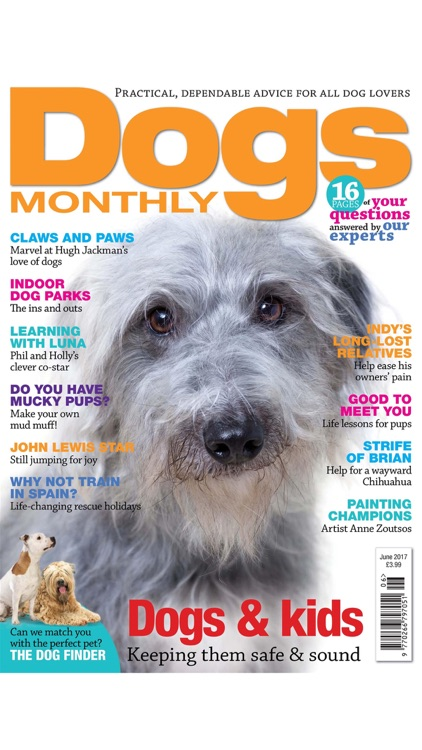 Dogs Monthly magazine - expert vet, behaviour and training advice for dog owners