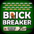 Brick Breaker CRICKET Edition icon