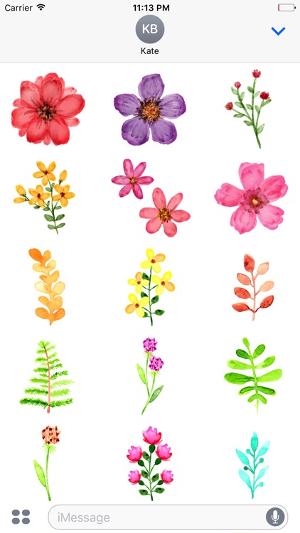 Watercolor Spring Flowers Stickers By Appbubbly