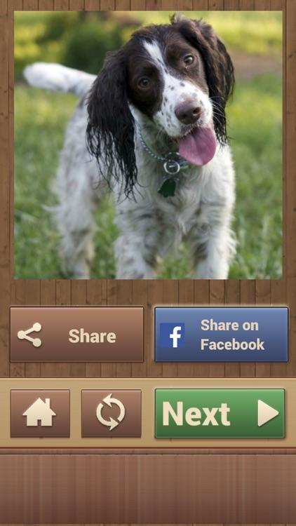 Dog Jigsaw Puzzles screenshot-4