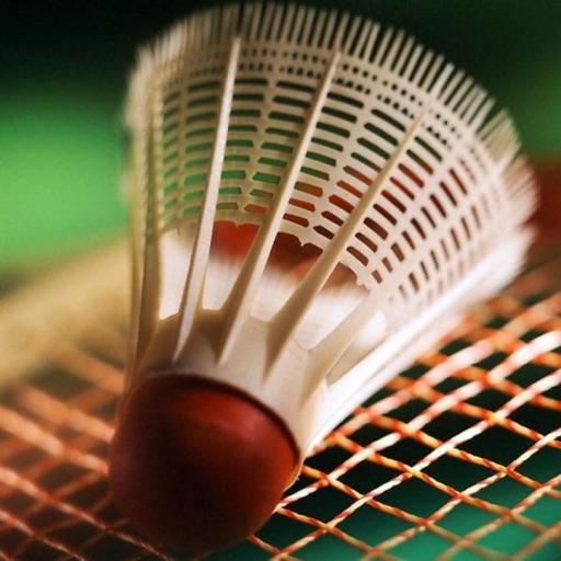 Badminton Campeones