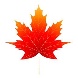 Sticker autumn leaves