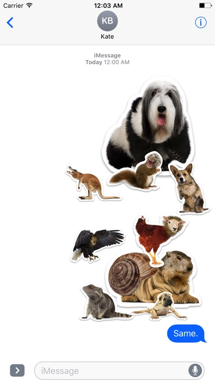 Animal Mashup Stickers