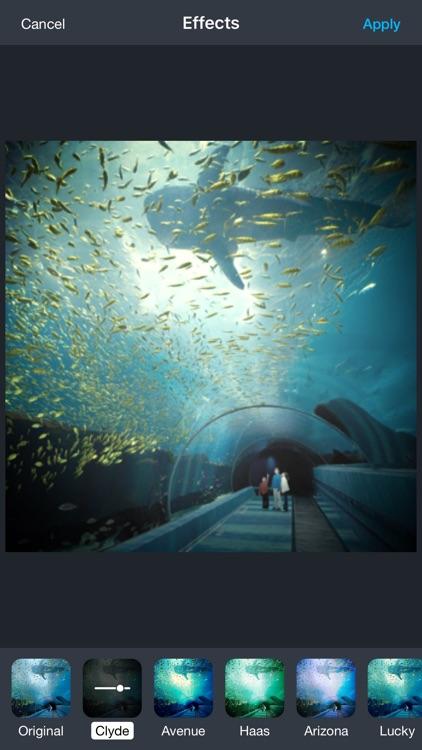 Aquarium Live Wallpaper | Nature coral ocean scene screenshot-3
