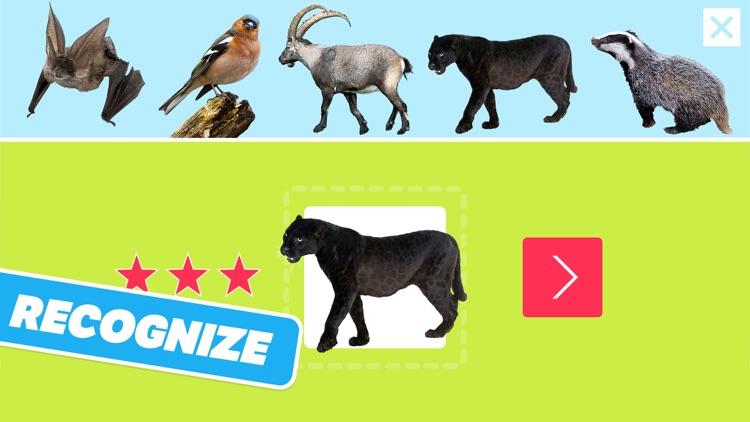 Animal Sounds, Photos and Info screenshot-3