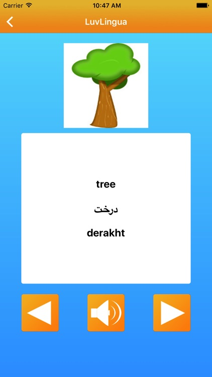 Learn Farsi Persian LuvLingua Pro screenshot-3