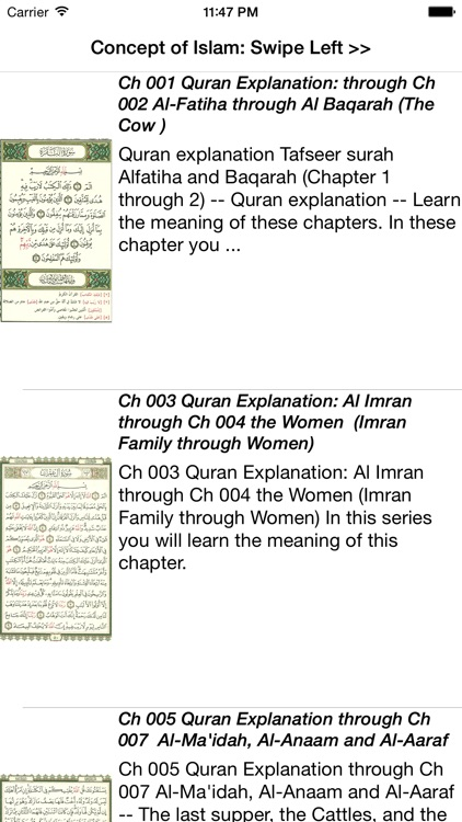 Concept of Islam screenshot-3