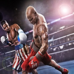 Boxing Champion 2017 Game