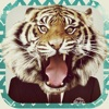 Animal Face - IG Selfie Editor & Stickers Reviews