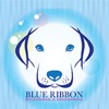 Blue Ribbon Boarding and Grooming