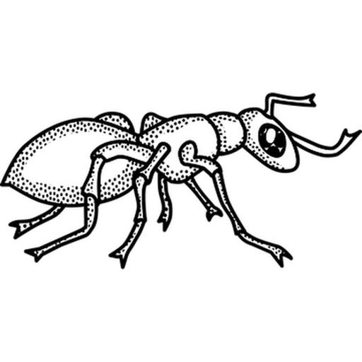 昆虫ステッカーパック