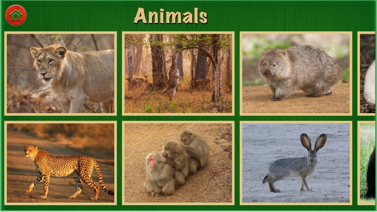 Animal World Pro For Kids and Toddlers Education screenshot-4