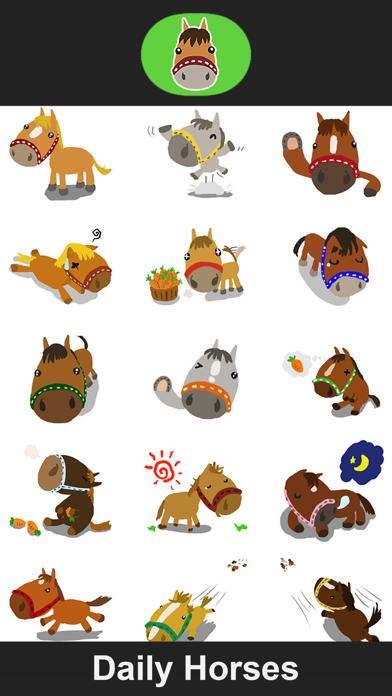 Daily Horses screenshot one