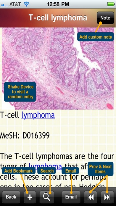 Blood Disorders Encyclopedia review screenshots