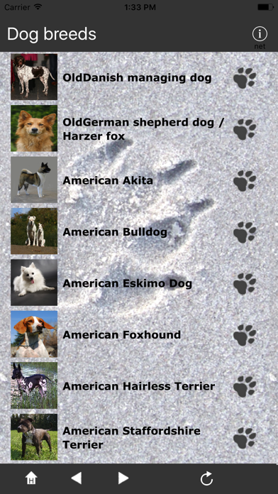 Breeds of Dogs screenshot two