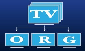 TV Org: watch iptv channels online + EPG programs