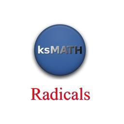 Algebra-1 Radicals