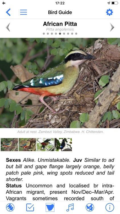 Roberts Bird Guide 2 screenshot-4