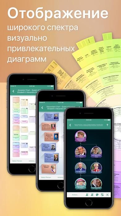 Скриншот №2 к MobileFamilyTree 9
