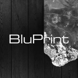 BluPrint Mag