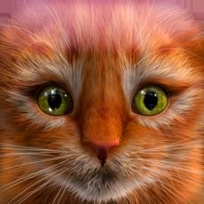 Activities of My Kitten (Cat Simulator)