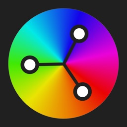 Color Wheel Professional
