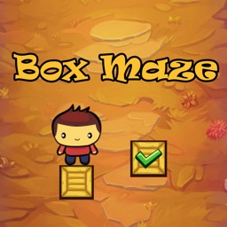 Box Maze: Use Your Imagination