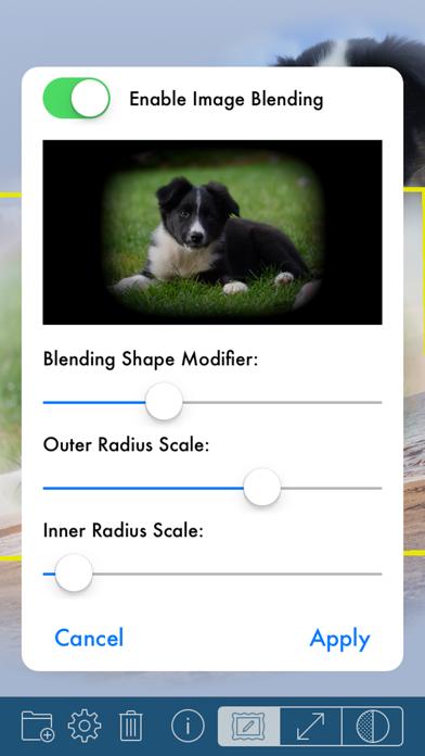 Phototangler Collage Maker review screenshots