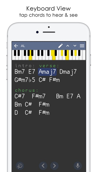 Musicians Notebook & Recorder app image
