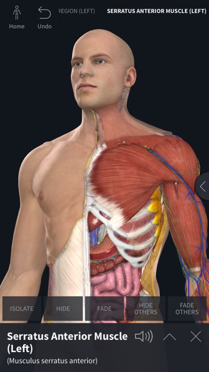 Complete Anatomy 19 for iPhone screenshot-0