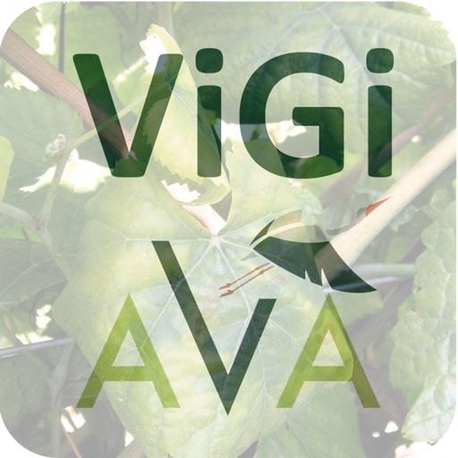 Vigi-AvA