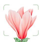 Blossom - Plant Identifier