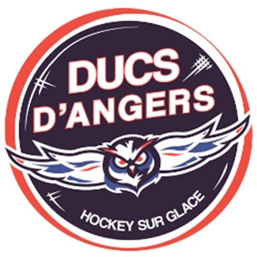 Ducs d'Angers