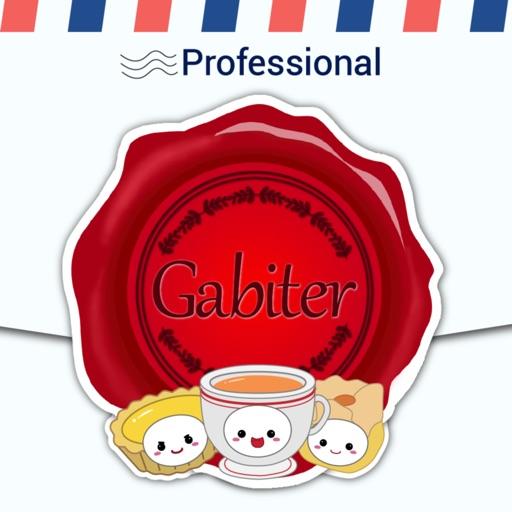GabiChinese Pro