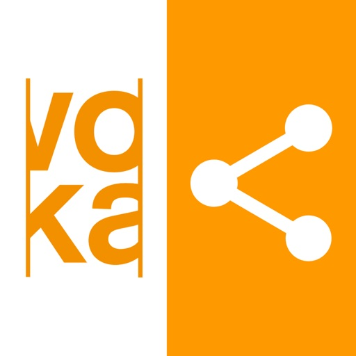 Voka Networking