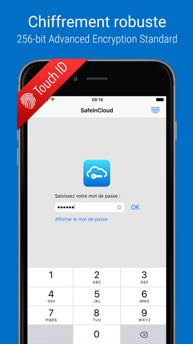 Screenshot SafeInCloud Pro