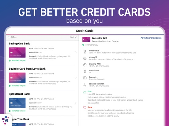 iPad Image of Experian Credit Report