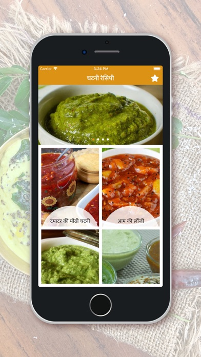 Chutney Recipes - Hindi screenshot 1