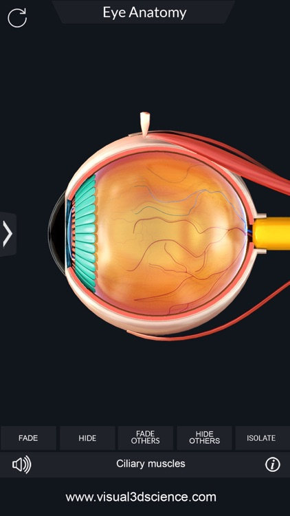 My Eye Anatomy screenshot-4