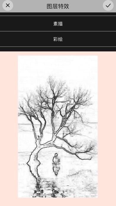 画画树·设计板