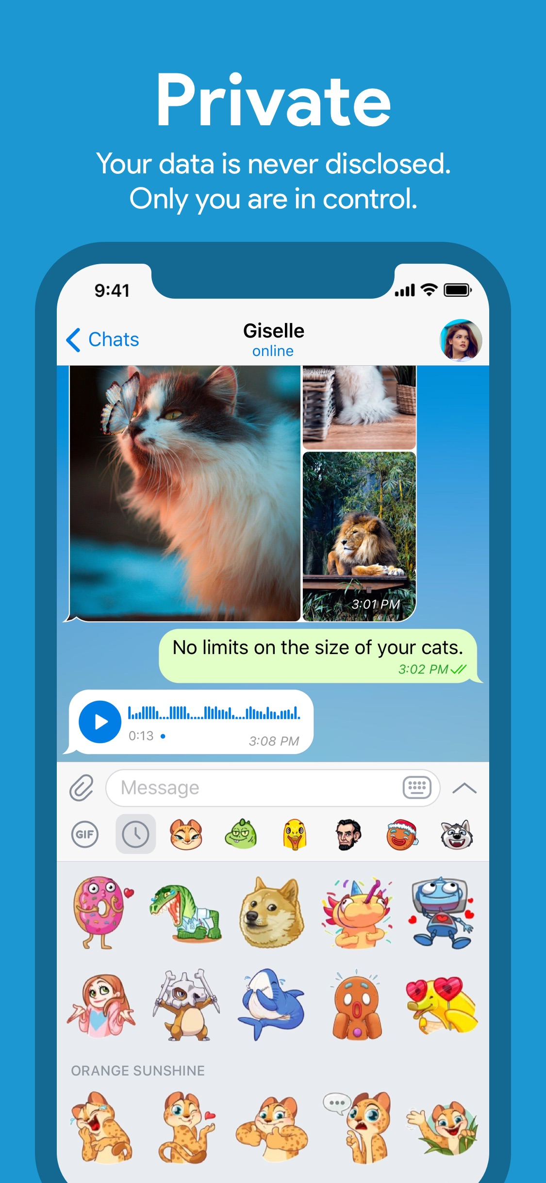 Screenshot do app Telegram Messenger