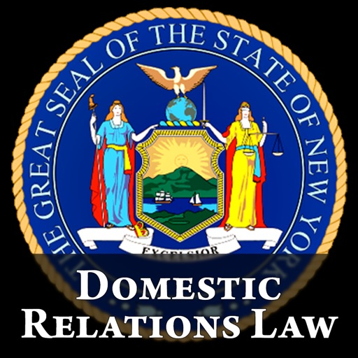 NY Domestic Relations Law 2020