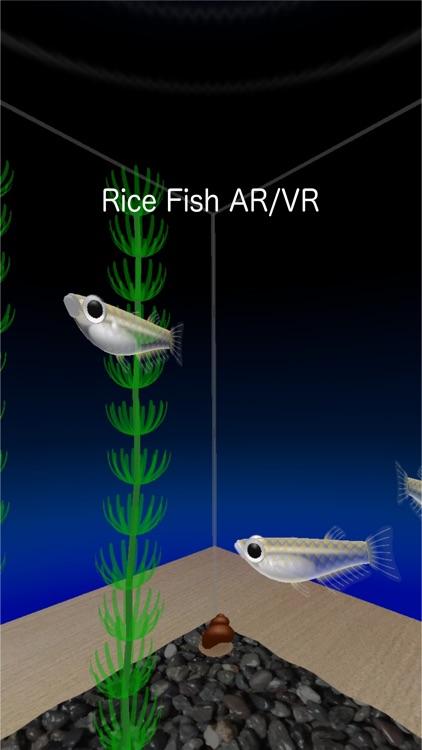 Rice Fish AR/VR screenshot-0